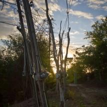 Jamaican Powergrid